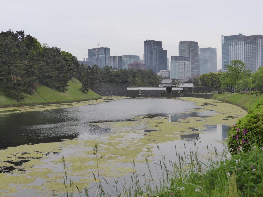 皇居の堀から桜田門を見る