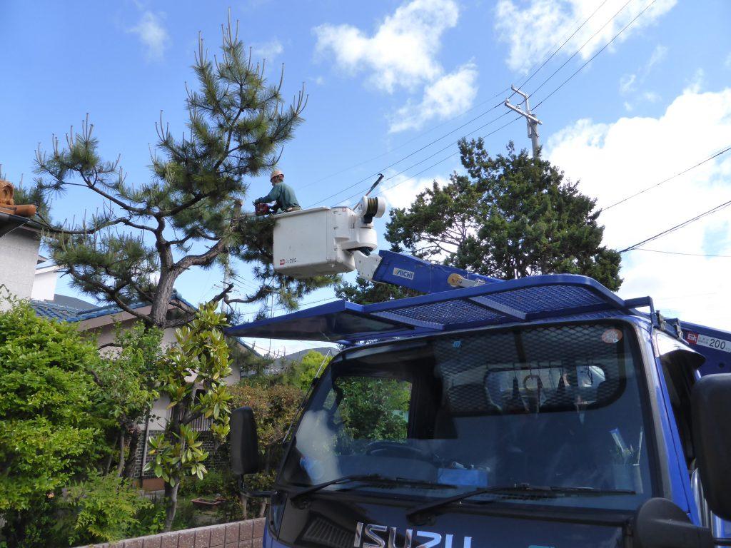高所作業車で効率よく木を伐採する